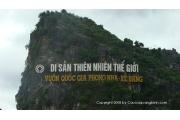 Quảng Bình – Phong Nha – Nhật Lệ  (4 Ngày 3 Đêm)